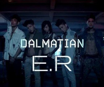 Dalmatian State Of Emergency Album Cover