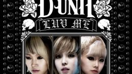 D-Unit Single Cover