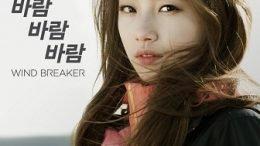 Wind Breaker CF