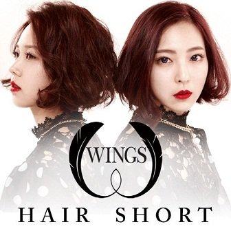 Wings Hair Short