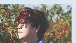 Kyuhyun 2nd mini-Album Cover