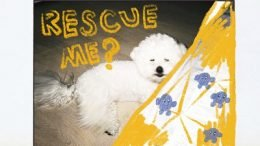 Fromm Rescue Me Cover