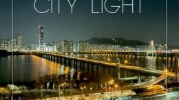 JD City Light Cover