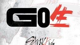 Stray Kids 1st Album GO Cover