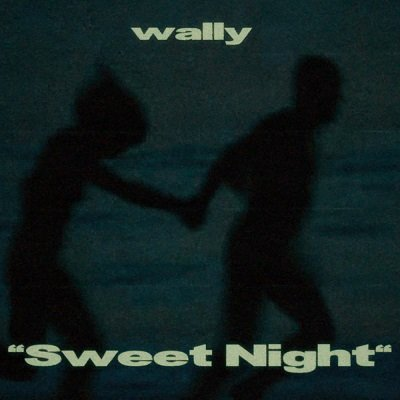 Wally Sweet Night Cover