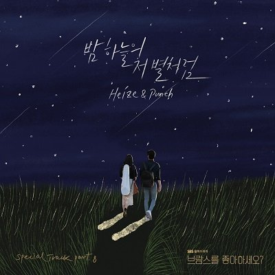 Heize & Punch Do You Like Brahms OST Part8 Cover