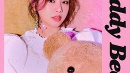 NATTY Teddy Bear Cover