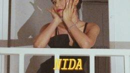 NIDA Please Go Away Cover