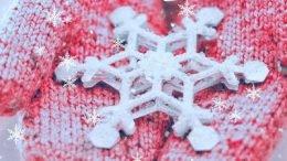 PaRangJaMong It snowing Cover