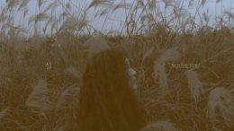 youbeyou Island Cover