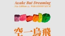 015B An open-eyed dream Cover