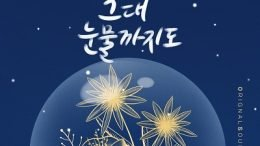 J-Cera Homemade Love Story OST Part 14 Cover