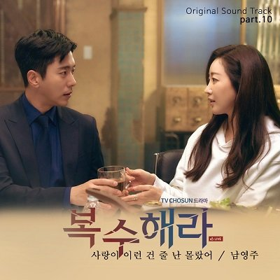NAM YOUNG JOO Take Revenge OST Part 10 Cover