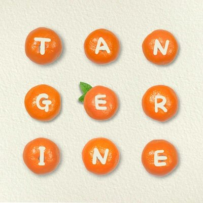 The Electriceels Tangerine Cover