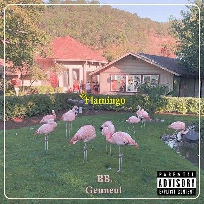 BB Flamingo Cover