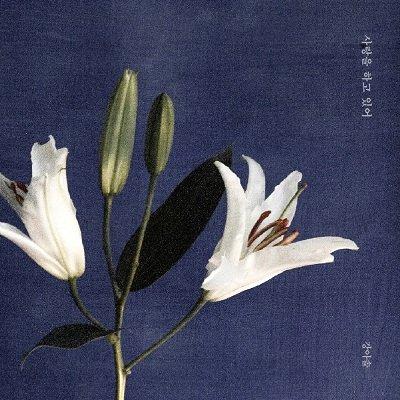 Kang Asol Im in Love Cover