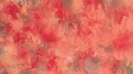 Crucial Star Cherry Blossom Cover