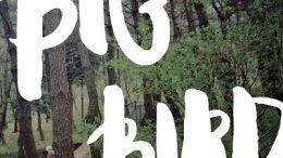 Darin Big Bird Cover