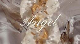 Solbi Angel Cover