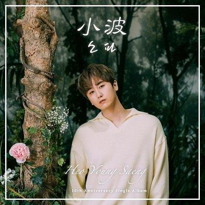Heo Young Saeng Sofa Cover