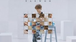 TAEWOO Pause Cover