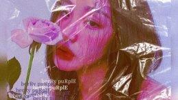 Vake Fairy Cover