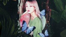 Effie Acid Fly Cover