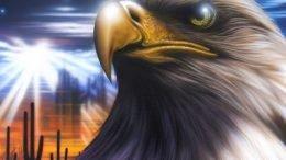 Slica Gel Desert Eagle Cover